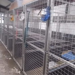 dog cages ireland