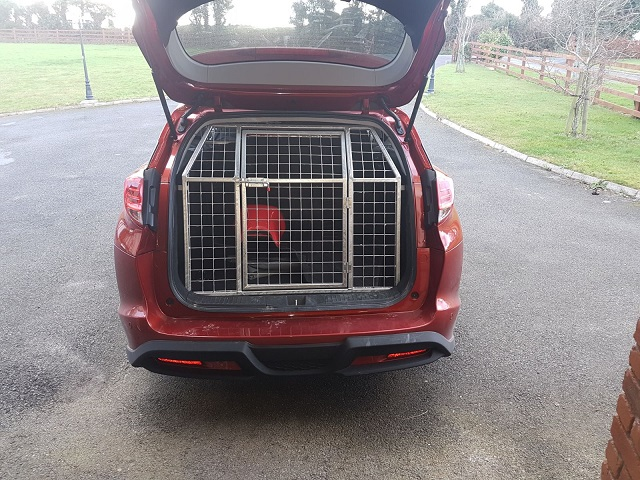 Dog Transport Box